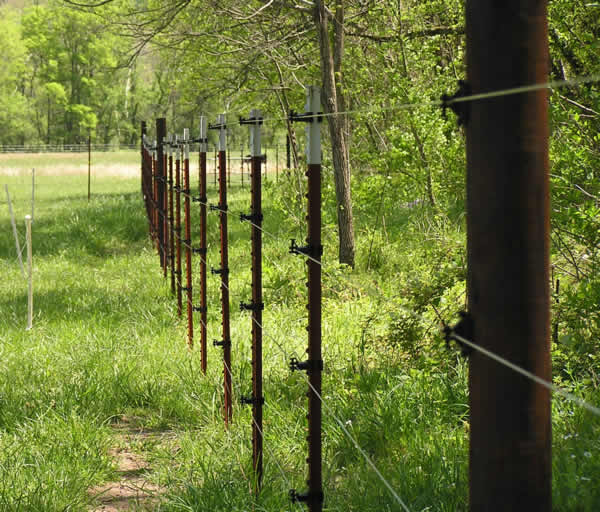 Riparian Buffer Fence